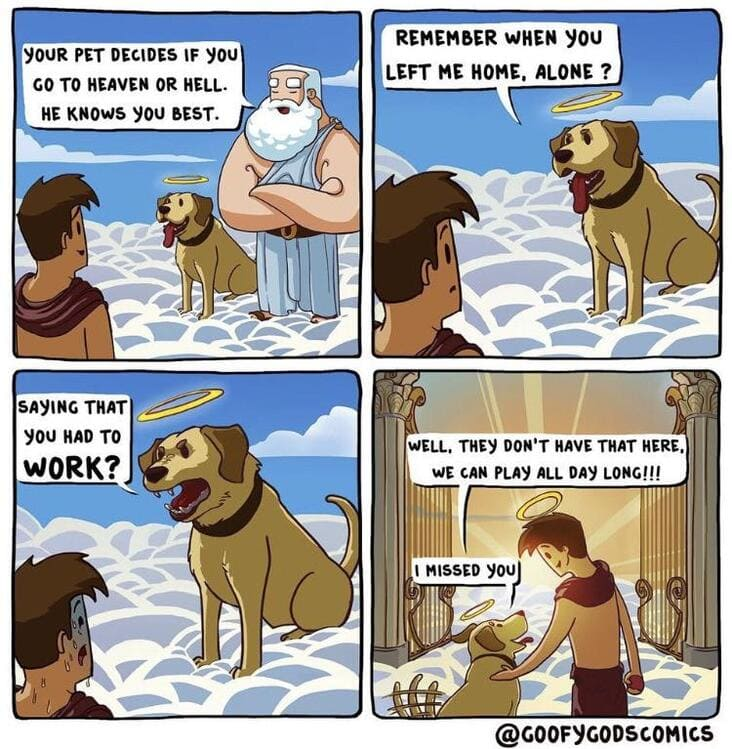 dogs choose if you go to heaven wholesome meme