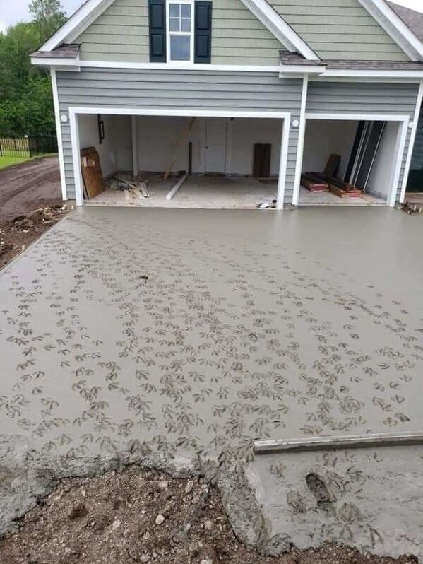 duck footprints in the concrete of driveway, funny people having a worse day, well that sucks