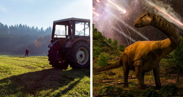 grass and dionsaurs, Things that are older than you thought, facts about early inventions, interesting facts about every day objects