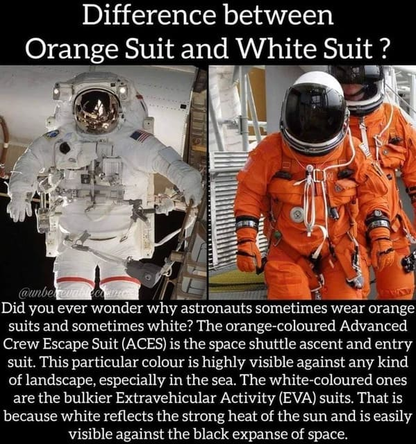 Photos that change your perspective, weird cool pictures, fun facts that put the world into perspective, interesting facts, reddit, damnthatsinteresting
