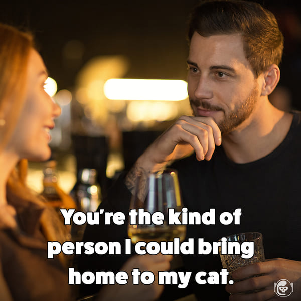 You're the kind of person I could bring home to my cat, Funny self deprecating pick up lines, pick up artist fails, hilarious mean self-owns, dating, love, relationships