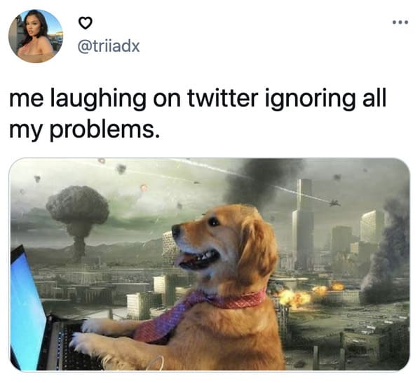Funniest non political tweets, jokes on twitter, lol, funny memes, hilarious, dumb observations, twitter, joke, this week